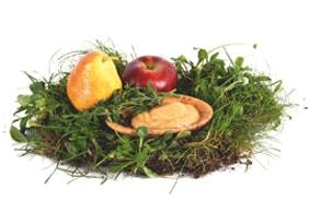 Gemüse & Obst